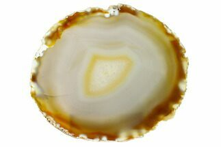 "Buy 5.8"" Polished Brazilian Agate Slice - #156304"