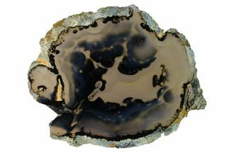 "7"" Polished Brazilian Agate Slice For Sale, #156308"