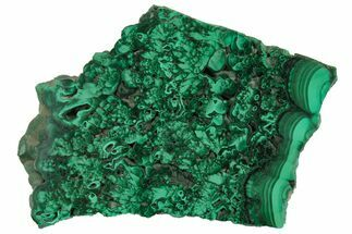"Buy 3.45"" Polished Malachite Slab - Congo - #157258"
