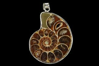 "1.3"" Fossil Ammonite Pendant - 110 Million Years Old For Sale, #151979"