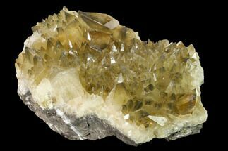 Calcite - Fossils For Sale - #159522