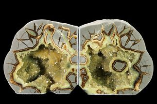 "Buy 4.8"" Wide, Crystal Filled Septarian Geode Bookends - Utah - #160165"