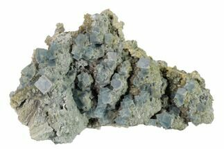 Fluorite - Fossils For Sale - #160713