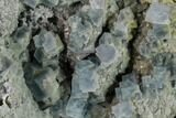 "4.7"" Blue Cubic Fluorite Crystal Cluster - China - #160713-1"