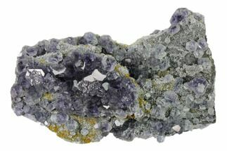 Fluorite & Quartz - Fossils For Sale - #161838