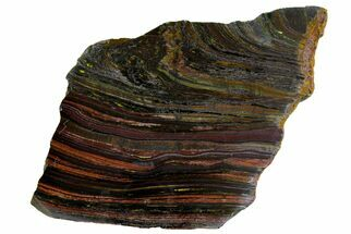 "7"" Polished Tiger Iron ""Stromatolite"" Slab - 3.02 Billion Years For Sale, #162086"