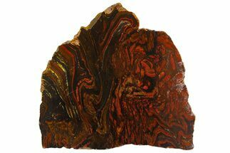 "Buy 9.7"" Polished Tiger Iron ""Stromatolite"" Slab - 3.02 Billion Years - #161890"