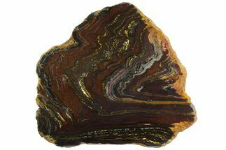 "Buy 12.3"" Polished Tiger Iron ""Stromatolite"" Slab - 3.02 Billion Years - #163111"
