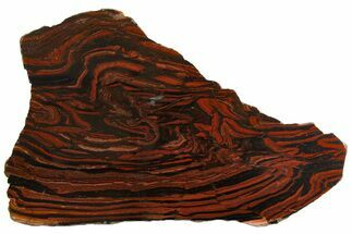 "12.6"" Polished Tiger Iron ""Stromatolite"" Slab - 3.02 Billion Years For Sale, #163112"