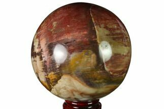 "Buy 3.9"" Colorful Petrified Wood Sphere - Madagascar - #163366"