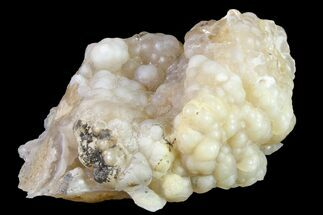 "Buy 1.6"" Botryoidal Chalcedony Formation - Indonesia - #163579"