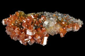 "Buy 2.15"" Vanadinite and Calcite Crystal Association - Apex Mine, Mexico - #165349"