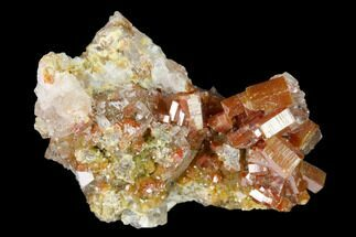 "Buy 1.1"" Vanadinite and Calcite Crystal Association - Apex Mine, Mexico - #165304"