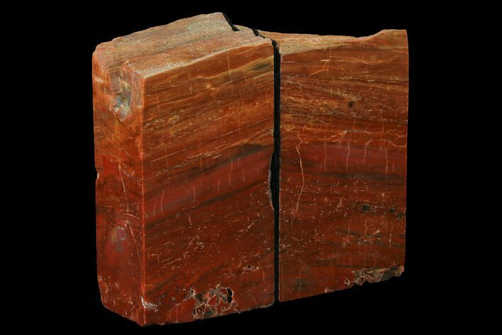 "5.1"" Tall, Arizona Petrified Wood Bookends - Red & Orange"