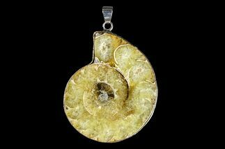 "Buy 1.7"" Fossil Ammonite Pendant - 110 Million Years Old - #166144"