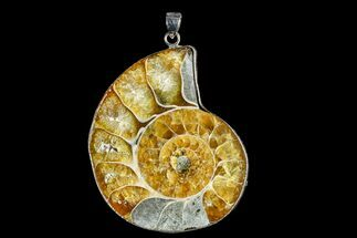 "1.9"" Fossil Ammonite Pendant - 110 Million Years Old For Sale, #166157"