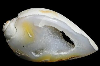 "1.21"" Chalcedony Replaced Gastropod With Druzy Quartz - India For Sale, #166926"