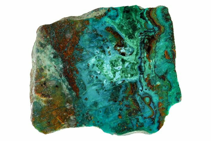 "2.05"" Polished Chrysocolla and Malachite - Bagdad Mine, Arizona"