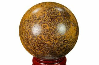 "Buy 1.95"" Polished Coquina Jasper Sphere - India - #167605"
