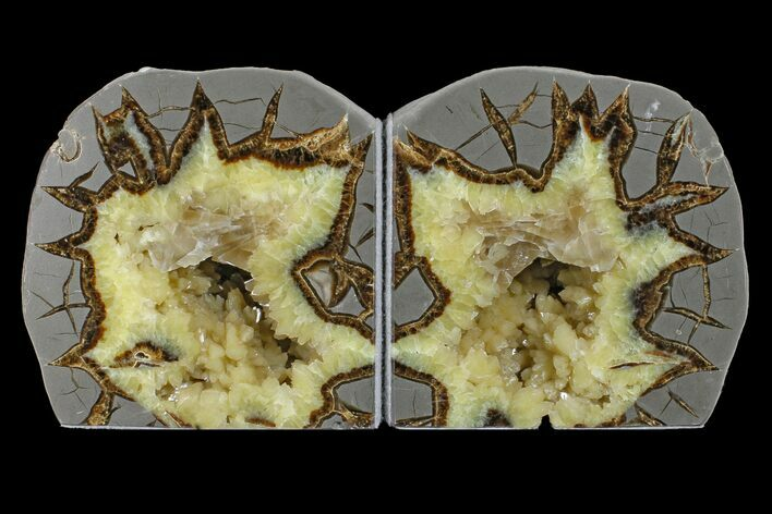 "4.6"" Wide, Crystal Filled Septarian Geode Bookends - Utah"