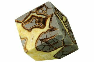 "Buy 3.2"" Wide, Polished Septarian Cube - Utah - #169525"