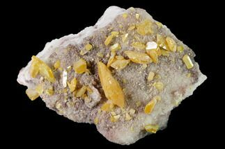 Wulfenite  - Fossils For Sale - #170307