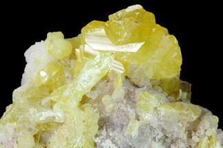 Wulfenite & Mimetite - Fossils For Sale - #170310