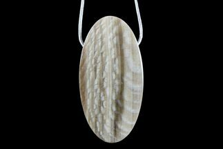 "1.78"" Petrified Wood (Sycamore) Pendant with Snake Chain Necklace For Sale, #171065"