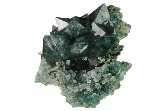 "1.3"" Apophyllite Crystals w/ Celadonite Inclusions -India"
