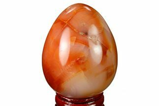 "2.25"" Colorful, Polished Carnelian Agate Egg - Madagascar For Sale, #172700"