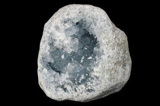Celestine (Celestite) - Fossils For Sale - #173079