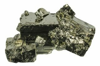Pyrite - Fossils For Sale - #173262