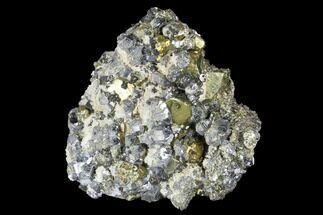 "Buy 2.1"" Galena, Chalcopyrite, Sphalerite and Pyrite Association - Peru - #173341"