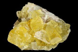 "Buy 1.15"" Yellow Cubic Fluorite Crystal Cluster - Morocco - #173962"
