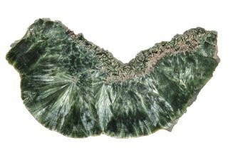 Clinochlore var. Seraphinite - Fossils For Sale - #174843