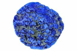 "Buy 1.81"" Vivid Blue, Cut/Polished Azurite Nodule - Siberia - #175567"