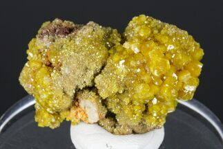 Pyromorphite - Fossils For Sale - #175890