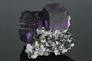 "2.6"" Purple Cubic Fluorite with Sphalerite & Galena - Illinois For Sale, #176030"
