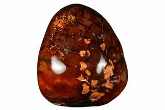 "Buy 6.2"" Free-Standing, Polished Carnelian Agate - Madagascar - #176707"