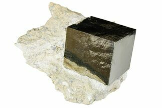 "Buy Large, 1.78"" Natural Pyrite Cube In Rock - Navajun, Spain - #177100"
