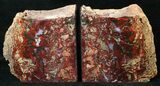 "6"" Jasper Replaced Petrified Wood Bookends - Oregon - #16883-2"