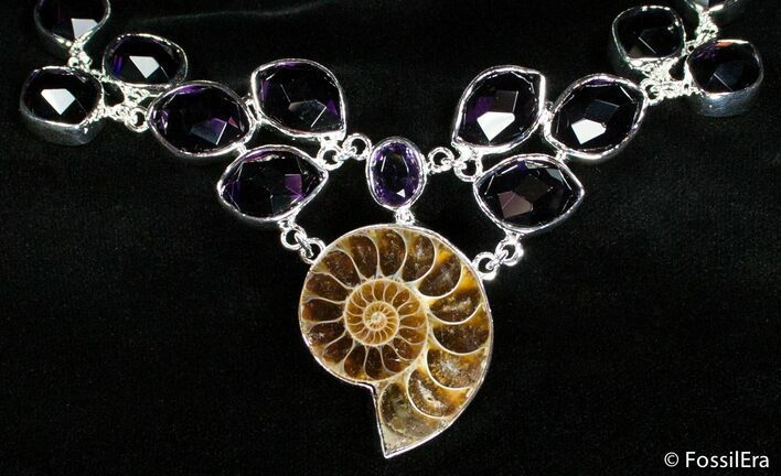 Ammonite Necklace with Amythyst